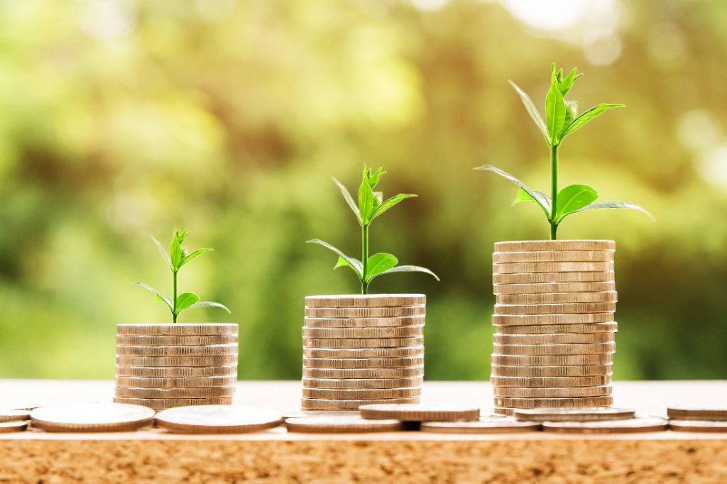 pieces-de-monnaie sur-lesquelles-poussent-les-plantes
